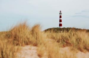 lighthouse-613051